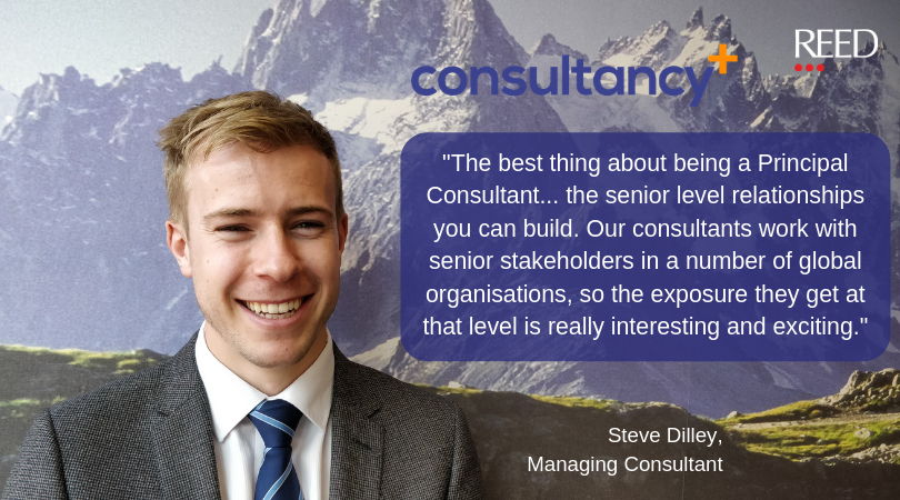 consultancy plus quote from Steve Dilley about best thing about being a Principal Consultant being the chance to build senior stakeholder relationships