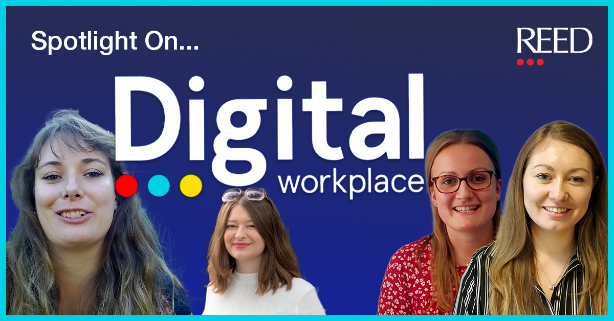 DWP Blog feat image - Digital Workplace Team members on main image tile for blog with reed logo top right